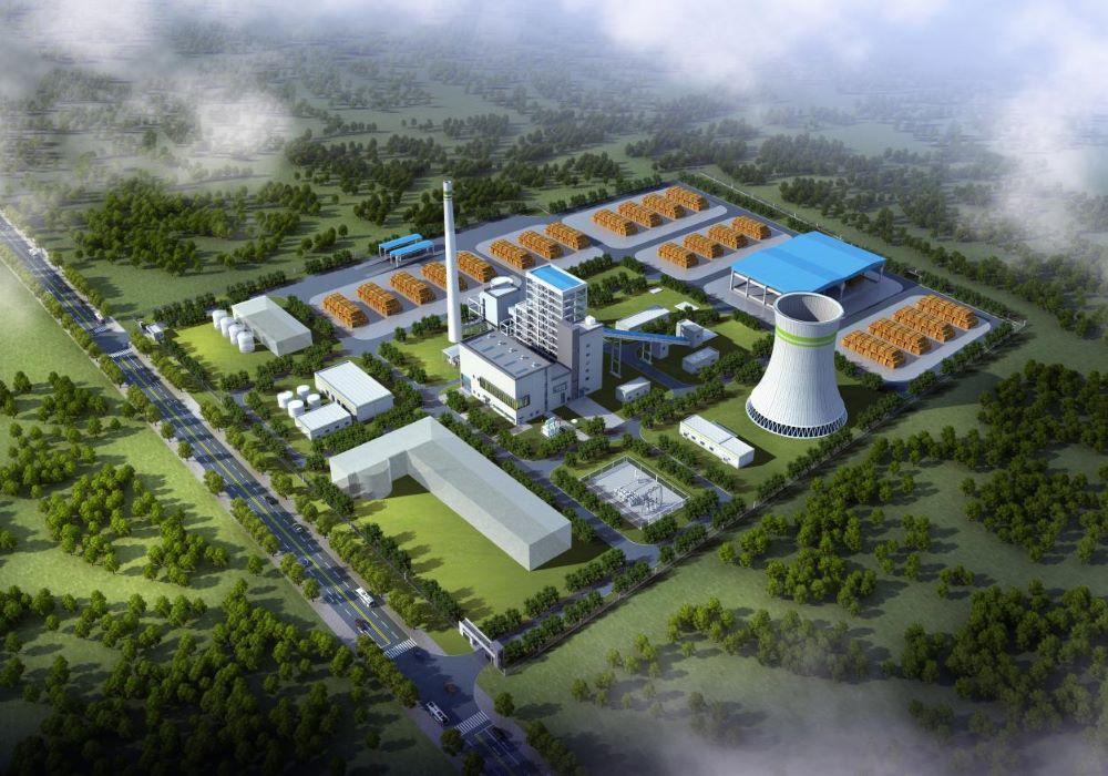 大荔1×30MW生物质发电项目.jpg